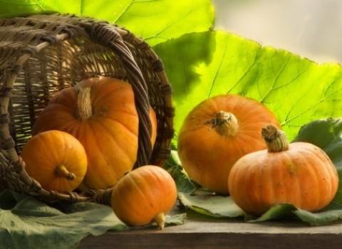 Блюда из тыквы для похудения
